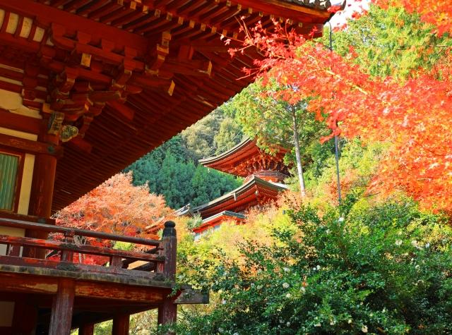 高尾山神護寺
