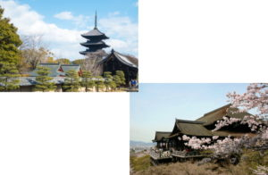 東寺から清水寺