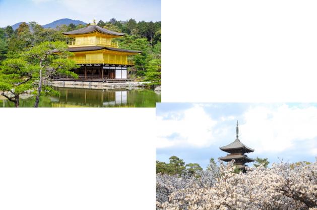 金閣寺から仁和寺