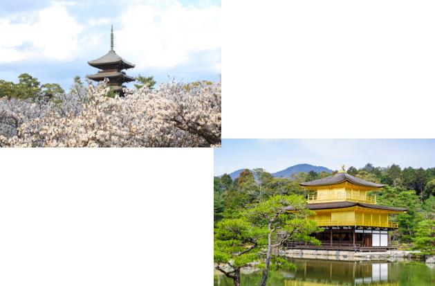 仁和寺から金閣寺
